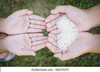 Hands holding rice with green grass as background