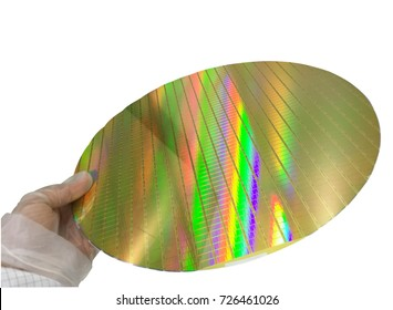 Hands holding a silicon wafers on a white background