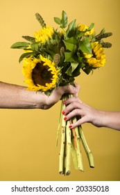 Hands holding sunflowers
