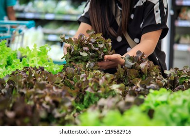 Hands holing lettuce in department store