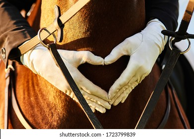 The hands of a horse rider girl in white gloves are folded on the chest of a horse in the shape of a heart
