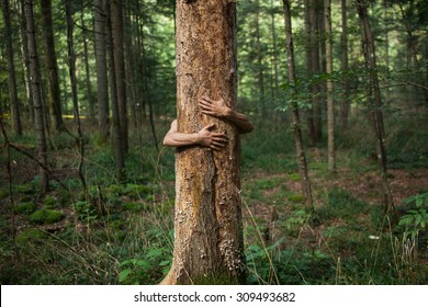 hands hugging a tree