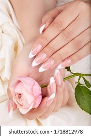 Hands with long artificial french manicured nails holding pink rose flower - Shutterstock ID 1718812978