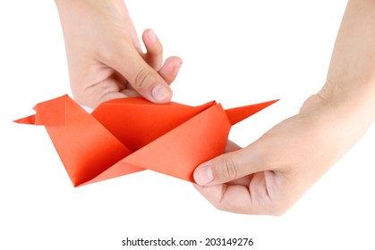 Hands making origami bird, close up, isolated on white