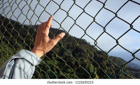 Hands of a man behind a metal fence. Symbolized of freedom and Concept for child abuse, human trafficking, crime and domestic violence.