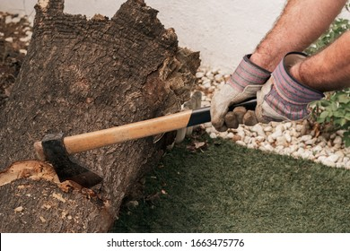 Hands of a man cutting down a tree in the garden. A strong lumberjack man with an ax in his hand. Firewood chopping ax. Ax for a tree, on a stump. Deforestation concept. Forester's ax or carpenter.