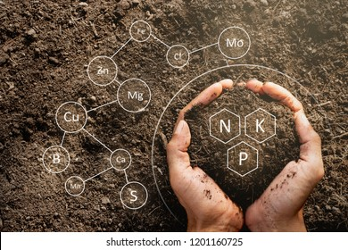 The hands of men are holding the soil rich in all the elements needed to grow plants and have digital icons included.