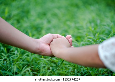 Hands and nature love Bright love Have to give each other Love and beauty in a natural way.