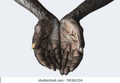 Hands of the old beggar isolated on white background, include clipping path