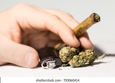 Hands on white background holding a cannabis joint and marijuana. Smoking marijuana addiction