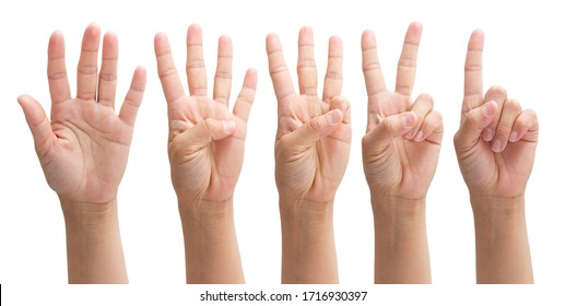 hands from one to five on a white background, set number 1 2 3 4 5 with hand