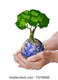Hands, our planet Earth and the tree - a symbol of environmental protection