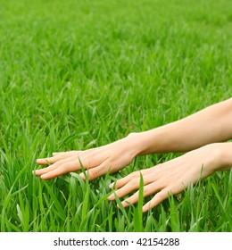 Hands over green grass