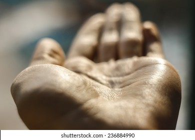 Hand's palm up