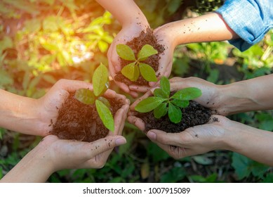 Hands People gardener and kidsTeam Work family Cupping  young tree Plant Nurture Environmental and reduce global warming earth.  Ecology Concept