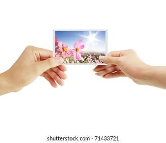 hands to the postcard