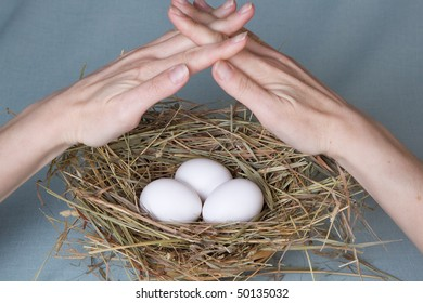 hands protect nest with eggs