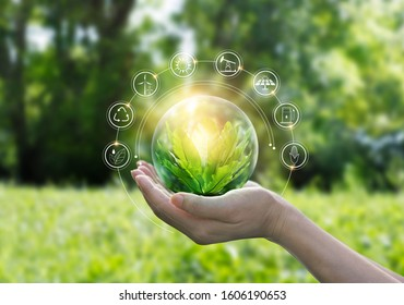 Hands protecting globe of green tree on tropical nature summer background, Ecology and Environment concept - Shutterstock ID 1606190653