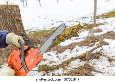 Hands in protective gloves holding power saw and making log fire wood in the village. In early spring preparation of firewood for autumn and winter. Renewable resource of energy.