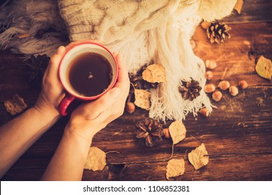 Hands in red knitted gloves holding a hot cup of coffee against yellow leaves background. Concept of autumn time, warmth and coziness