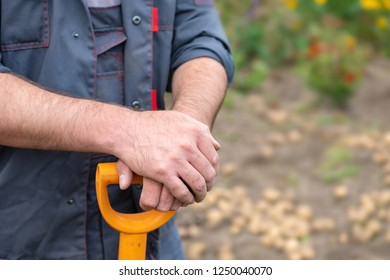 hands rest on the handle of a shovel, a man standing with a shovel