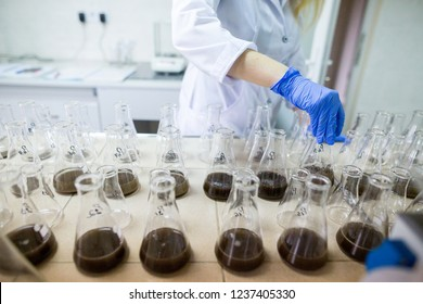 Hands of the scientist in laboratory shake a glass flasks with dissolved samples of the soil. Agrochemical examination of soil to more efficient use resources and optimize the use of fertilizers.