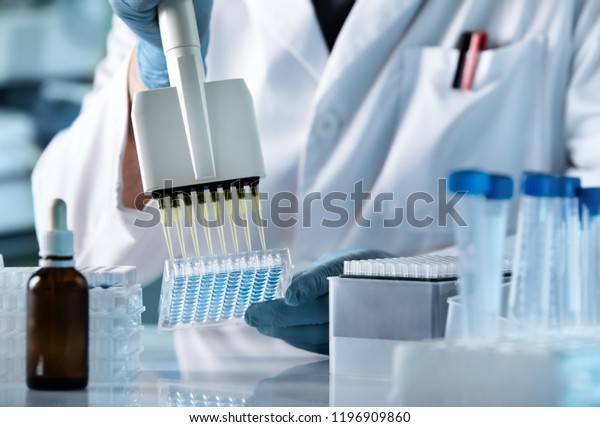 hands of scientist working with multichannel pipette and multi well plates / research technician with multipipette in genetic laboratory