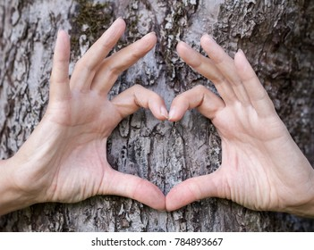 Hands show love symbol in front of a tree heart