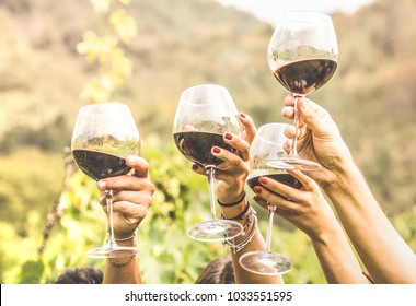 Hands toasting red wine glass and friends having fun cheering at winetasting experience - Young people enjoying harvest time together at farmhouse vineyard countryside - Youth and friendship concept