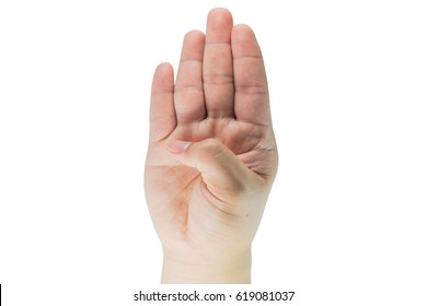 Hands are the vital organs of our human body. Assists in the body's desire to hold the hand, and much more. Hands, therefore, need to be important to the body.