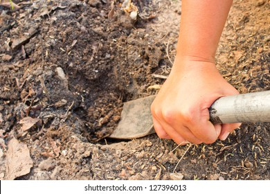 Hands were digging with spades.