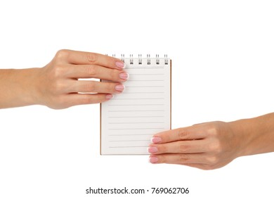Hands of woman holds clean notebook, isolated on the white