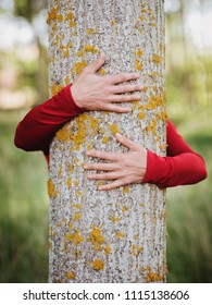 hands of woman hugging a tree