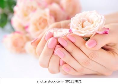 Hände einer Frau mit rosafarbener Maniküre auf Nägeln und Rosen
