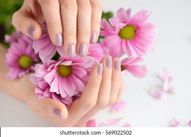 Hands of a woman with pink manicure on nails and pink flowers on a white background