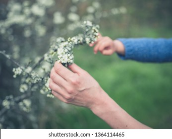 The hands of a woman and a toddler are touching some lichen outdoors