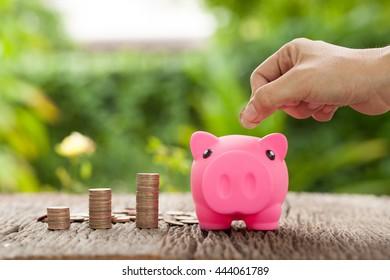 Hand's women putting coins in a piggy bank, Piggy bank and money tower, saving concept