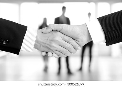 Handshake of businessmen on blur businesspeople background, monochrome effect - greeting, dealing, merger and a acquisition concepts