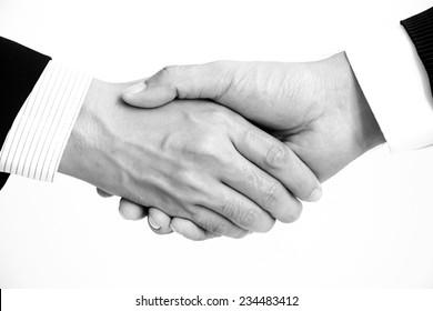 Handshake of businessmen - success, congratulation, greeting & business partner concepts