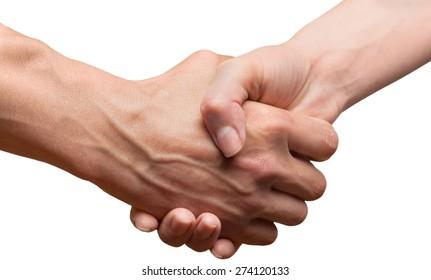 Handshake, Holding Hands, Human Hand.