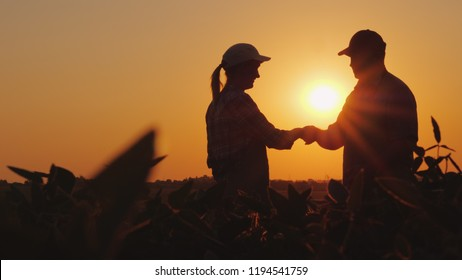 Handshake men and women farmers. On the field at sunset