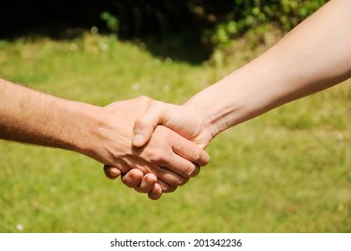 Handshake on natural environment