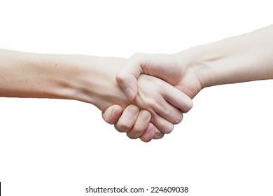 Handshake on white background.