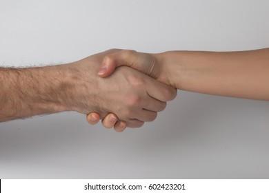 Handshake on the white background