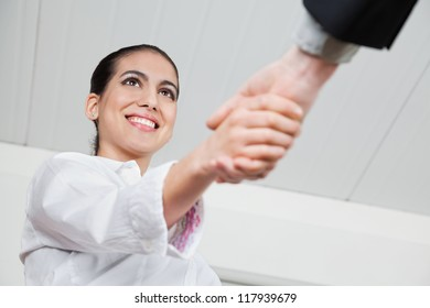 Handshake with a smiling businesswoman in the office