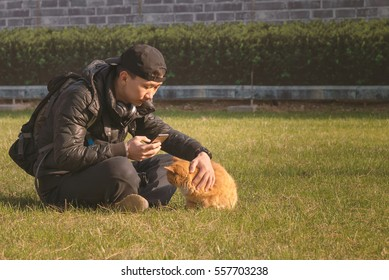 Handsome Asian young man sitting on the meadow playing with a cat holding a smart phone