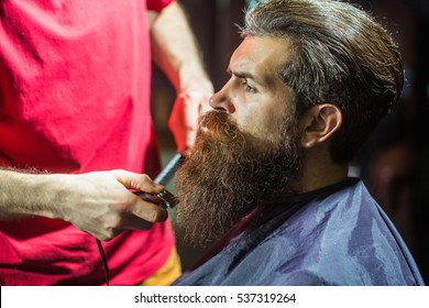 Handsome bearded man, hipster, brunette with beard and moustache has haircut or clippering in hairdressing saloon or barbershop. Barber works with clipper and comb