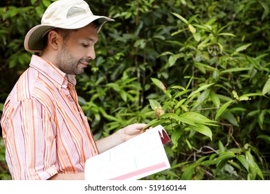 Handsome botanist with stubble wearing striped shirt holding manual or guide in one hand and green plant with flowers in another, studying its characteristics with happy and joyful look. Side view