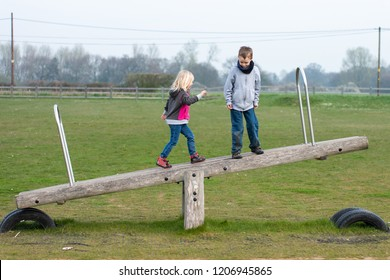 A handsome boy with ADHD, Autism, Asperger Syndrome plays with his sister at the park on the wooden seesaw and swings