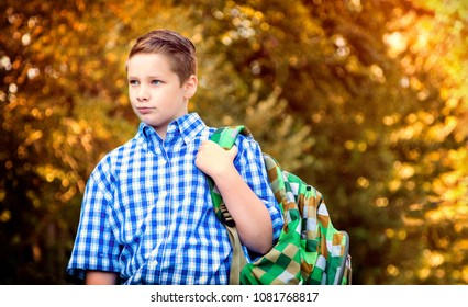 Handsome boy with backpack going to school in autumn